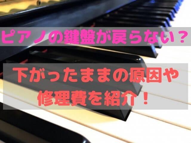 ピアノの鍵盤が戻らない?下がったままの原因や修理費を紹介!